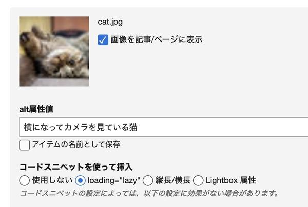 モーダルダイアログからの画像挿入時にコードスニペットを選択する