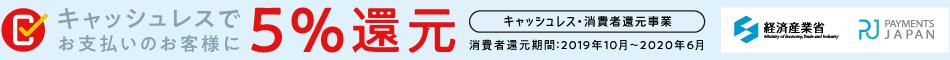 payments_japan.png